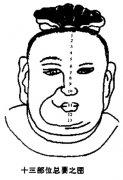 <a href='http://baike.yidao5.com/shushu/shoumianxiang/12941.shtml'>十三部位</a>