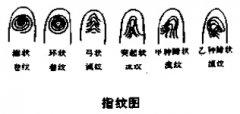 <a href='http://baike.yidao5.com/shushu/shoumianxiang/12951.shtml'>三十二卦指纹</a>
